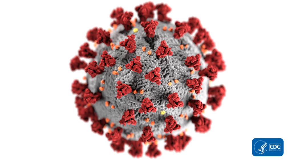 Coronavirus image from the US Centers for Disease Control