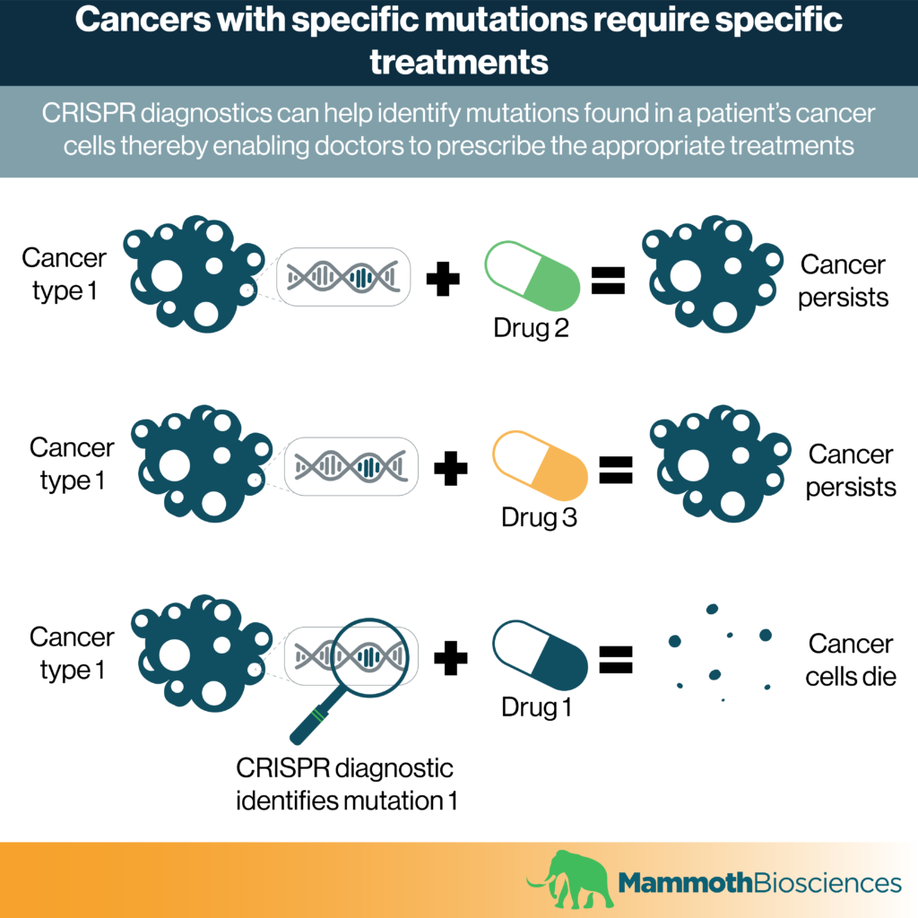Image showing how CRISPR diagnostics can help identify mutations associated with a patient's specific type of cancer. After identifying these mutations, doctors can prescribe the appropriate drugs to successfully fight that cancer.