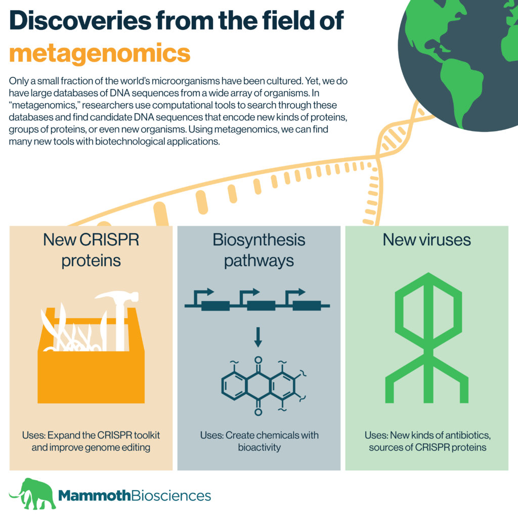 Infographic displaying some of the discoveries that have come from metagenomics including: new CRISPR proteins, biosynthesis pathways, and new viruses