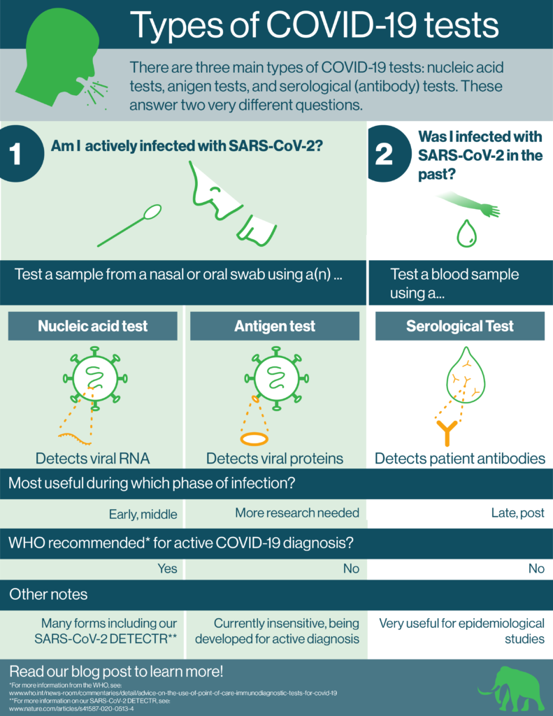 Infographic describing the three kinds of COVID-19 tests and their uses. Nucleic acid tests detect viral RNA. Antigen tests detect viral proteins. Serological tests detect patient antibodies.