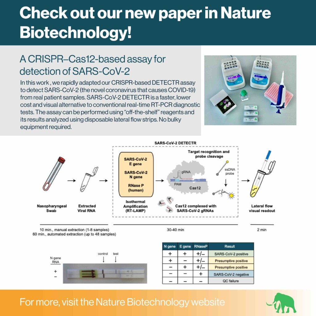 Image summarizing Mammoth Bioscience's recent paper describing the development of a CRISPR-based SARS-CoV-2 DETECTR.
