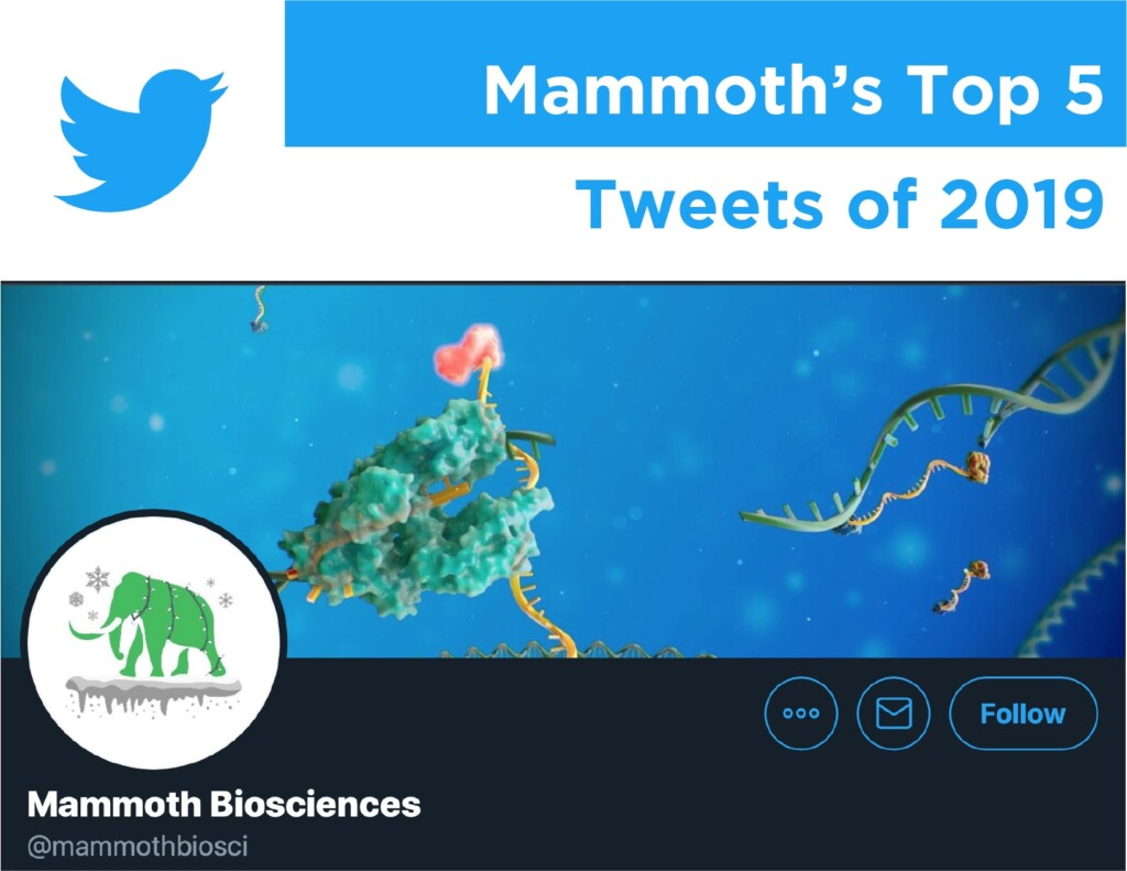 "Banner image with the Twitter logo showing a screen shot of Mammoth Bioscience's twitter profile and the words ""Mammoth's Top 5 Tweets of 2019."""