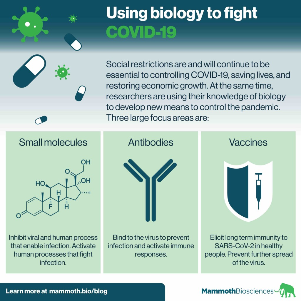 Infographic describing how small molecules, antibodies, and vaccines can be used to control the COVID19 pandemic.