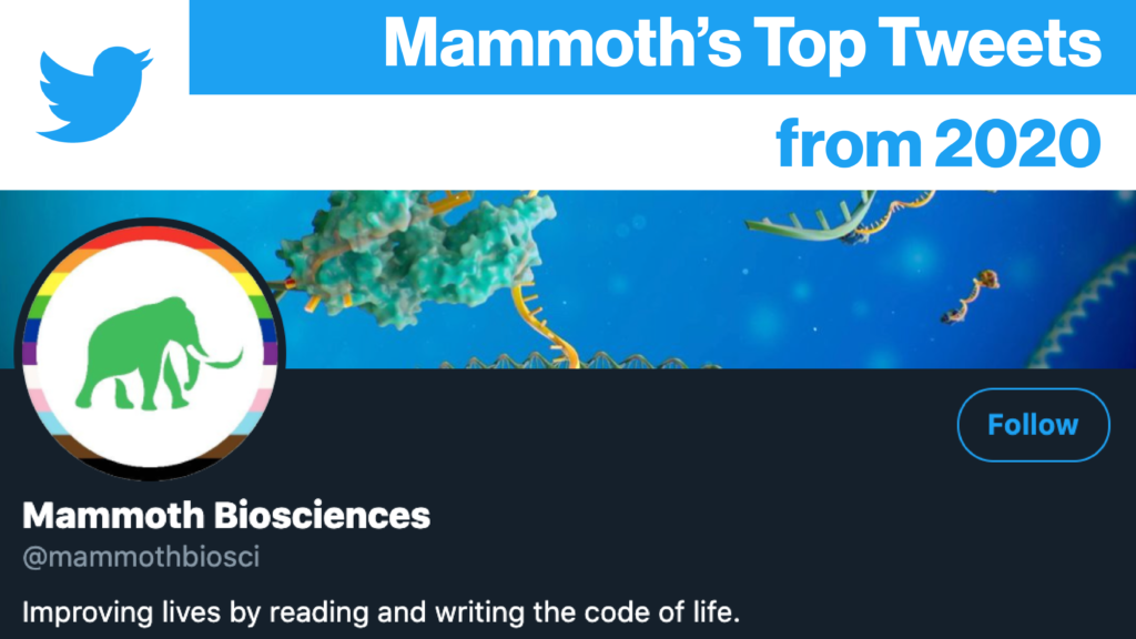 """Banner image for Mammoth Biosciences' """"Top Tweets from 2020"""" blog post. The banner features a screen shot from Mammoth's Twitter account."""