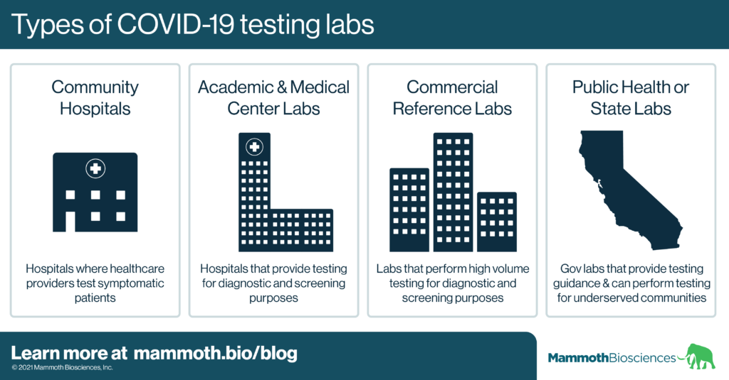 Graphic highlighting 4 main types of labs that do COVID-19 testing. These include community hospitals, academic & medical center labs, commercial reference labs, and public health or state labs.