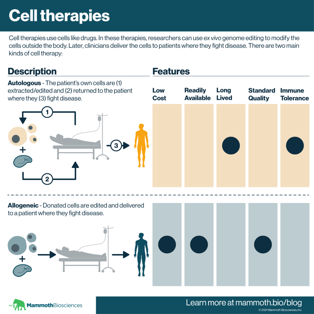 Graphic providing an overview of autologous and allogeneic cell therapies. Cell therapies use cells like drugs. In these therapies, researchers can use ex vivo genome editing to modify the cells outside the body. Later, clinicians deliver the cells to patients where they fight disease. In autologous cell therapies, the patient's own cells are extracted/edited and returned to the patient where they fight disease, In allogeneic cell therapies, donated cells are edited and delivered to a patient where they fight disease. While autologous cell therapies are likely to be long lived and tolerated by the immune system, allogeneic cell therapies may cost less, be more readily available, and have higher standard quality.